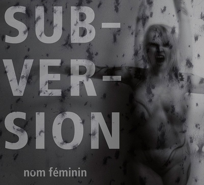 Hurluberlue-Photographe-Strasbourg-exposition-subversion.jpg